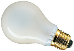 110 Volt 40 Watt Edison Screw Standard (GLS) Rough Service Pearl