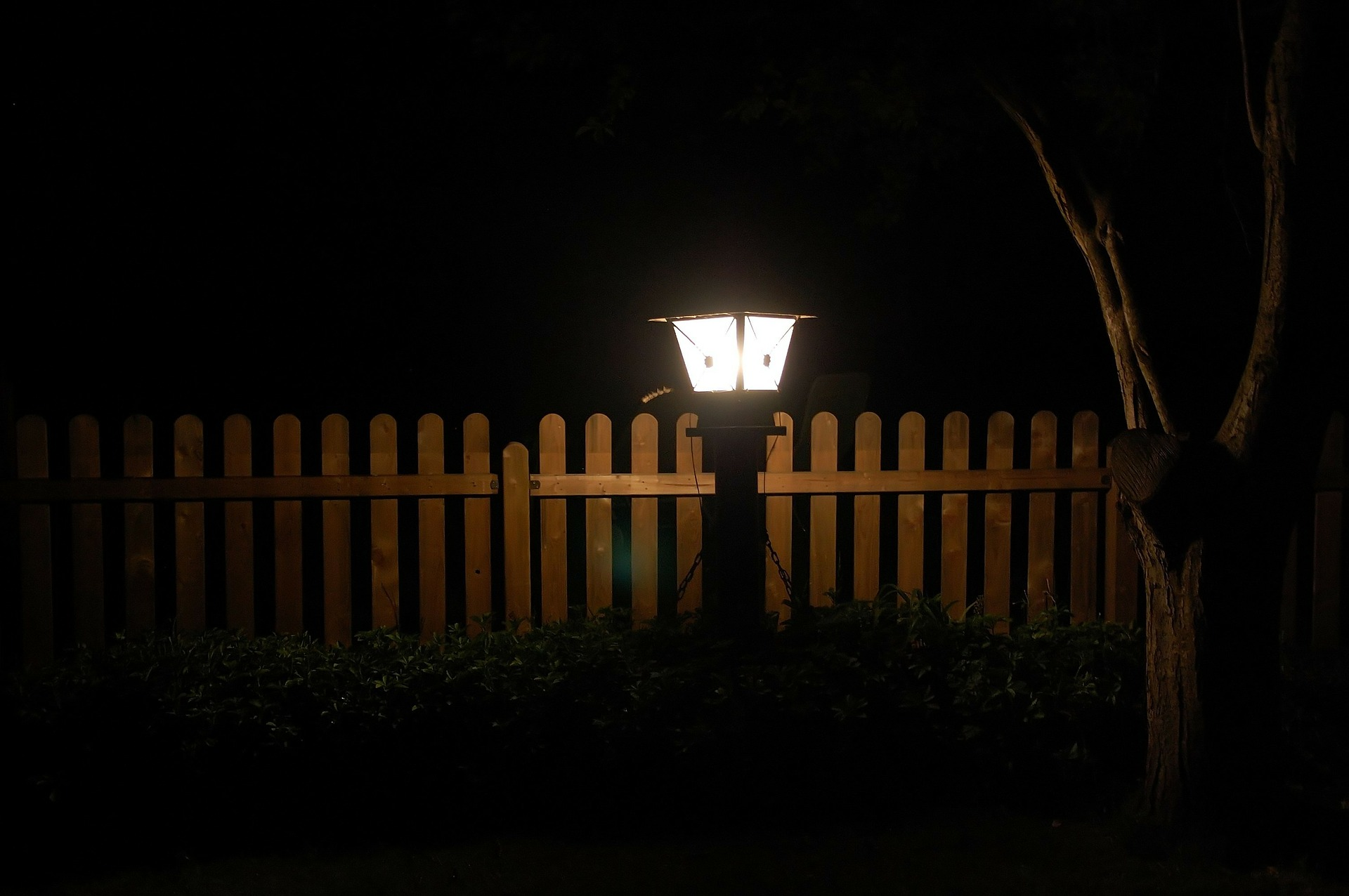 How To Update Your Garden Lighting To Show Off Your New Plant Projects
