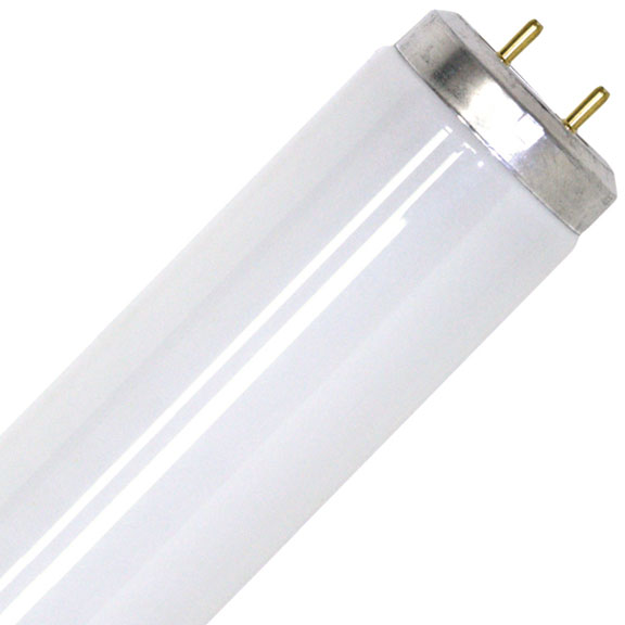 38mm Diameter Fluorescent Tubes