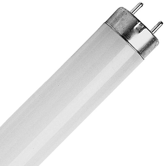 25mm Diameter Fluorescent Tubes